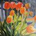 Tulips - Evening Light